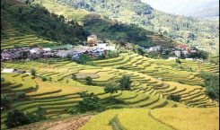 Le district Xin Man