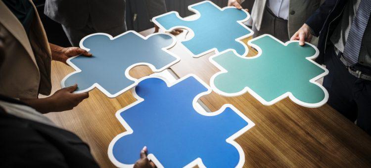 Comment se déroule le management de transition au sein d'une organisation ?