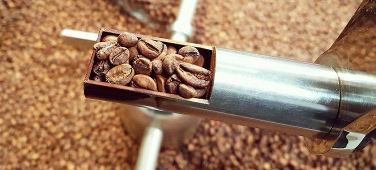 Comprendre le fonctionnement de la torréfaction du café