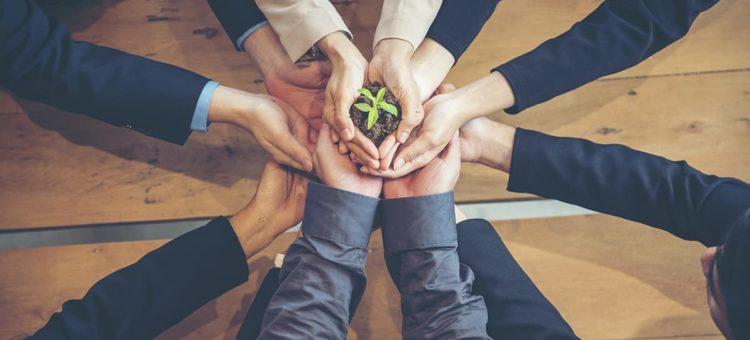 Comment minimiser l'impact écologique de votre entreprise ?